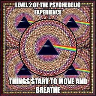 Level 2 Trip: Things start to move and breathe