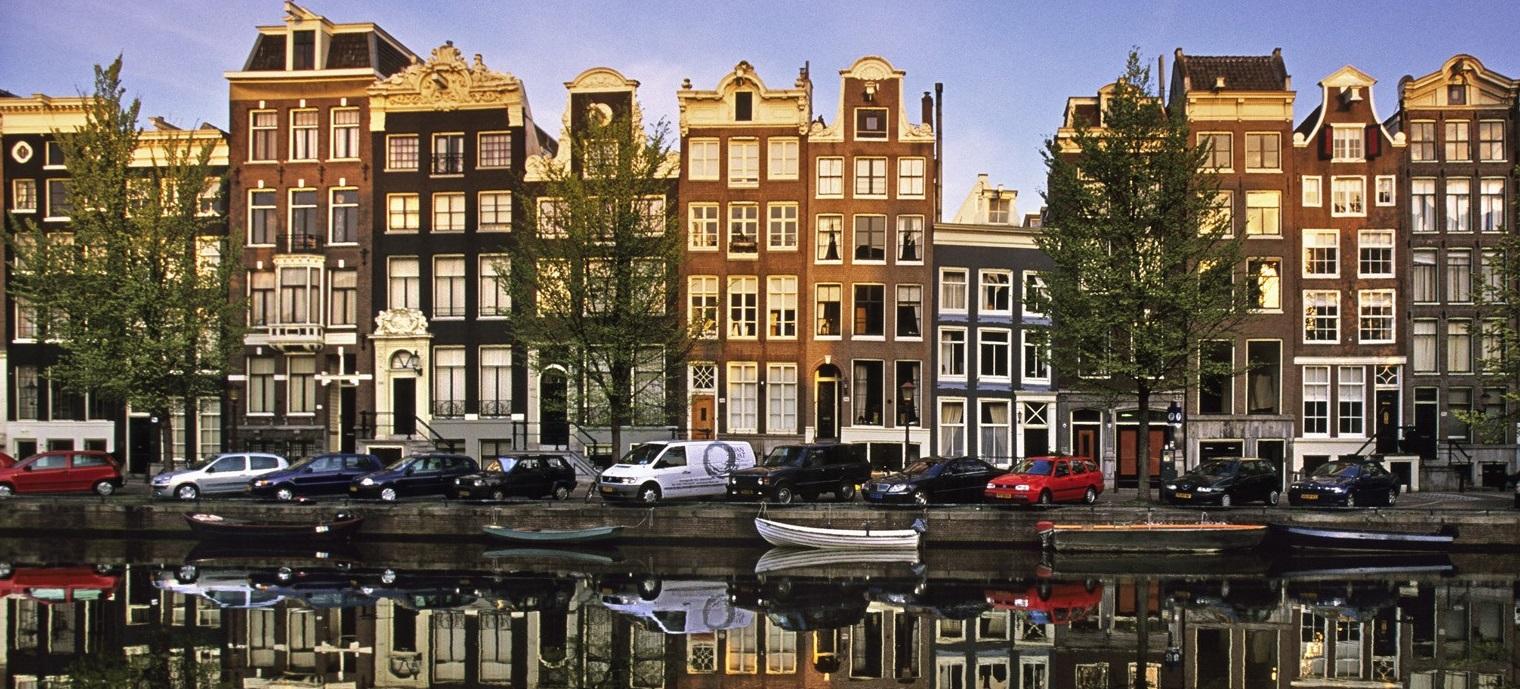 Trufflemagic Magic Truffle Incident In Amsterdam What Happened