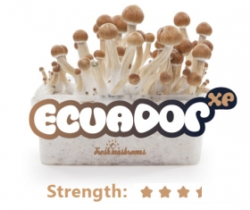 Ecuador Grow Kit