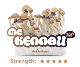 Mc Kennaii Grow Kit