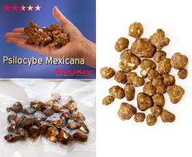 Psilocybe Mexicana Sealed Package Contents