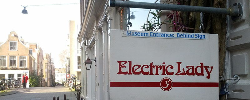 Electric Lady Museum visited by Trufflemagic