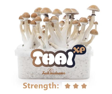 Thai Grow Kit