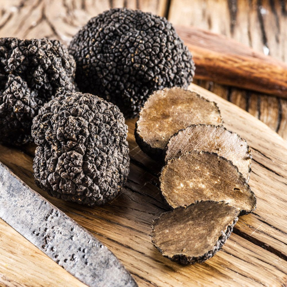 Taste of Magic Mushrooms - Trufflemagic - Fresh Truffles
