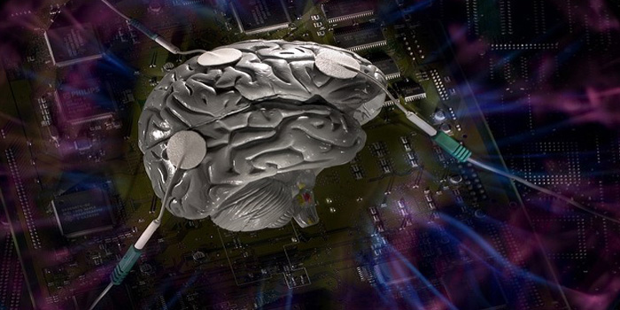 Changing Brain Networks for Studying
