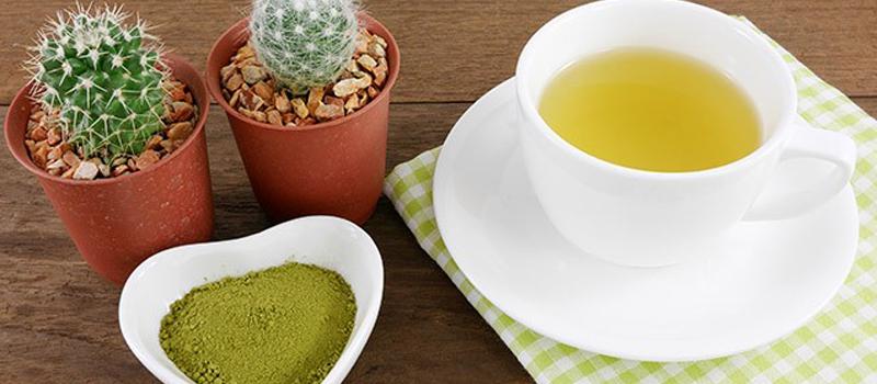 Best Way to Make Mescaline Tea