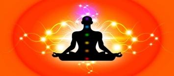 Similarities between Magic Mushrooms and Meditation