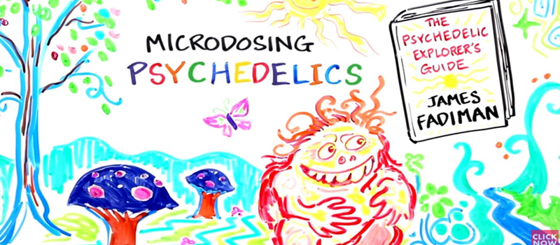 4 Benefits of Microdosing LSD and Shrooms Regularly