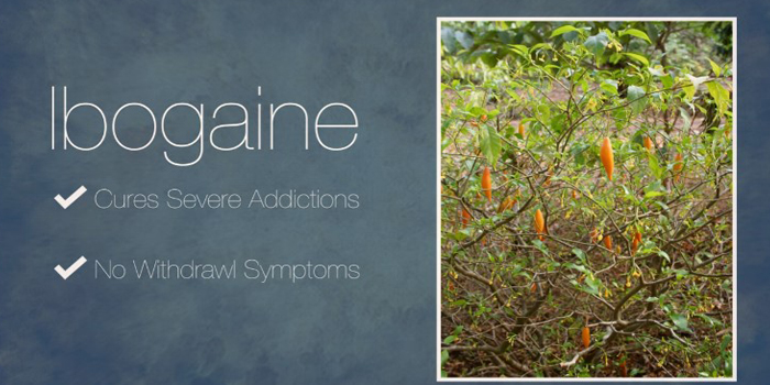 Benefits of Ibogaine