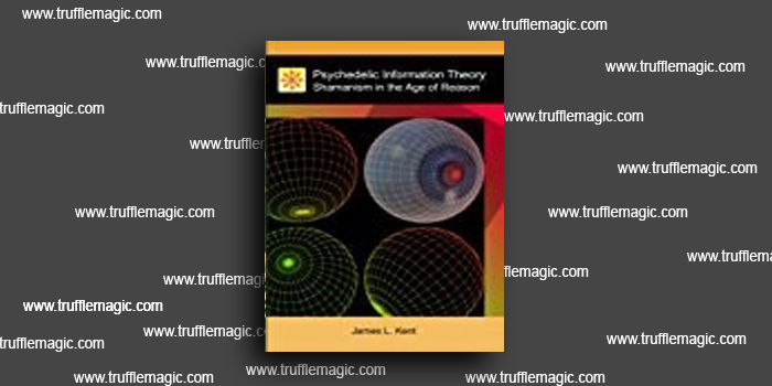 Psychedelic Information Theory