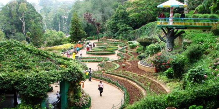 Tripping in a botanical garden