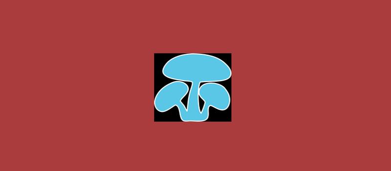 Shroomery: The Ultimate Magic Mushroom Resource - Trufflemagic